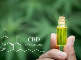 大麻二酚是什么 能治疗焦虑失眠吗