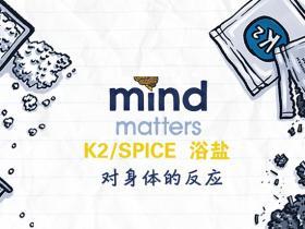K2/Spice(合成大麻素)和浴盐(合成卡西酮)对人的影响 毒品预防教育