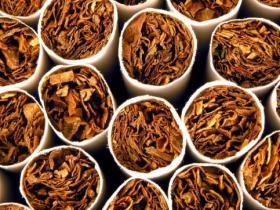 香烟中尼古丁成瘾性不低于毒品